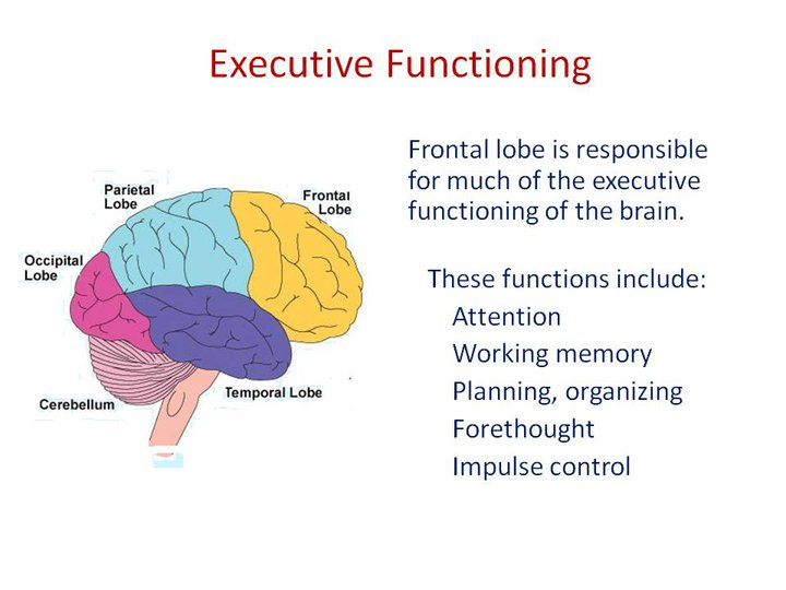 function of a ceo The ceo of any company has two broad long-term functions and a tactical function to play strategy is by-far the most loosely used term, in general i would like to provide clarity to the word here.