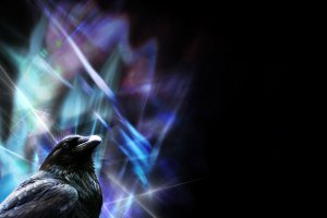 Sharp_Raven_wallpaper_by_LadyLuminal
